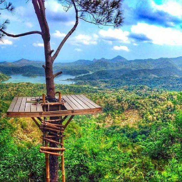 Kalibiru, Spot Foto Mengagumkan di Jogja