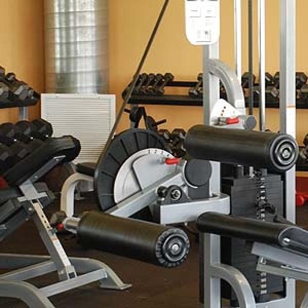 Ini Dia 3 Manfaat nge-Gym