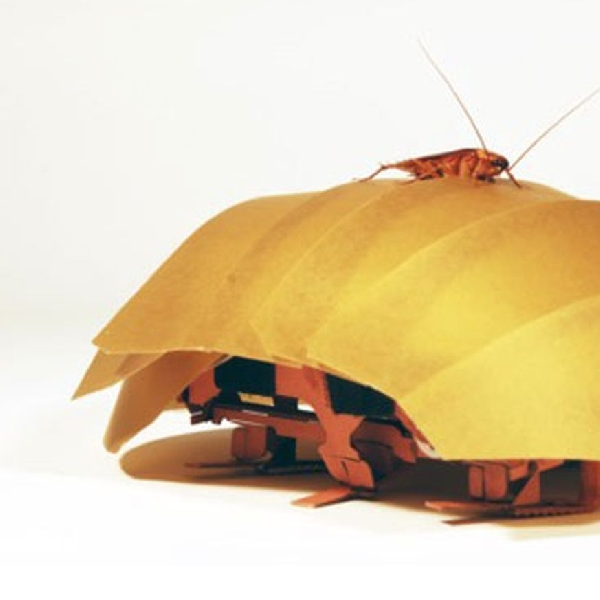CRAM, Robot Kecoa Yang Mampu Lakukan Pencarian Dan Penyelamatan Dengan Cepat