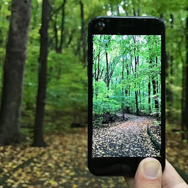 5 Tips Mengambil Foto dan Video Menggunakan iPhone 7