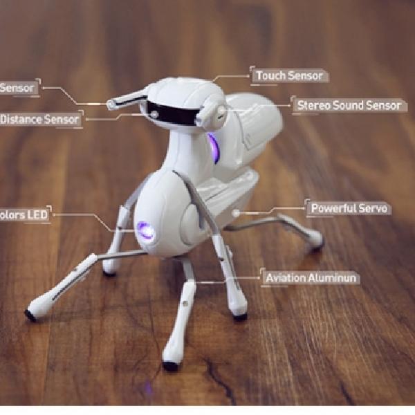 Antbo, Robot Yang Mampu Jadi Sahabat
