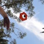 Birdie, Parasut untuk Action Cam, Bisa Foto di Udara