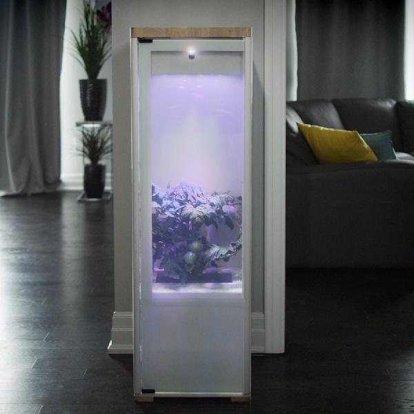 Grobo Indoor Garden, Mudahkan Anda Dalam Merawat Tanaman