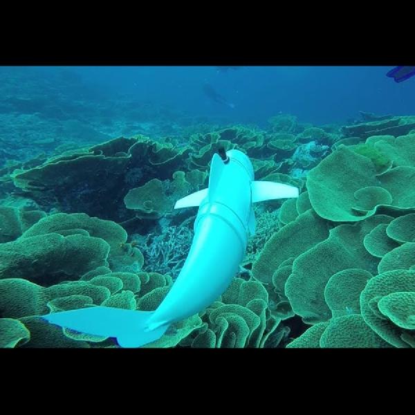 SoFi, Robot Ikan Realistis Penjelajah Bawah Laut