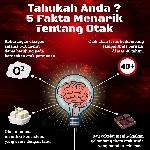 5 Fakta Menarik Tentang Otak