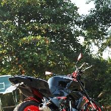 Tampak samping Honda Tiger modifikasi